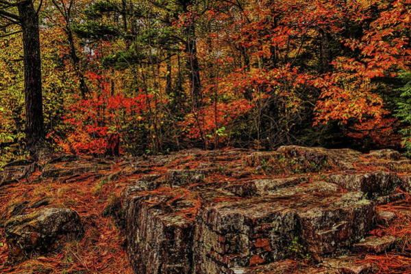 Photograph - Eau Claire Dells In Autumn Colors by Dale Kauzlaric