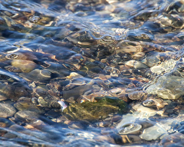 Photograph - Ebbing Tide 2 by William Selander