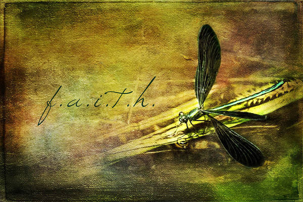 Painting - Ebony Jewel Wing Damselfly Faith by Christina VanGinkel