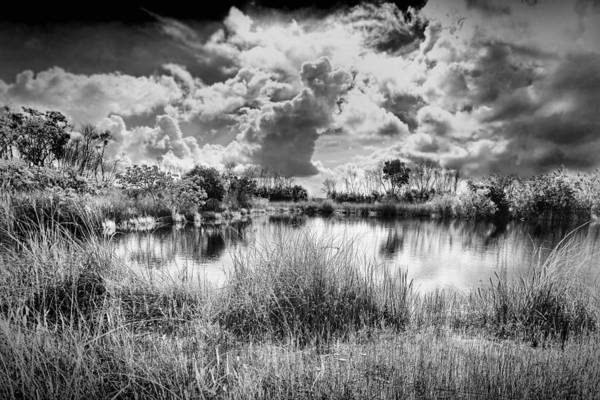 Photograph - Everglades Lake 5678bw by Rudy Umans