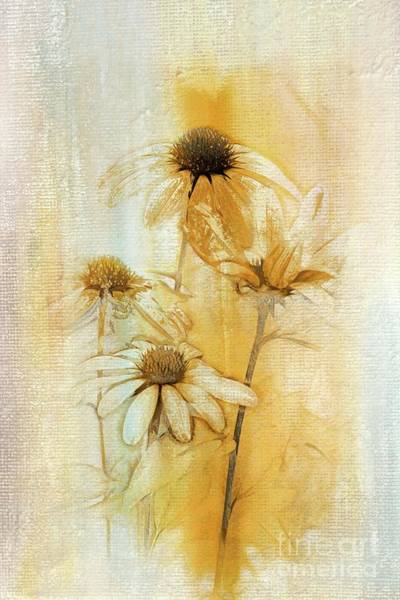 Wall Art - Digital Art - Echinacea - A221t3 by Variance Collections