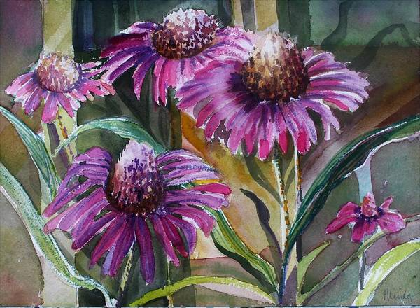 Wall Art - Painting - Echinacea The Healing Daisy by Mindy Newman