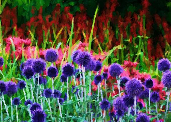 Digital Art - Echinops Border by Charmaine Zoe