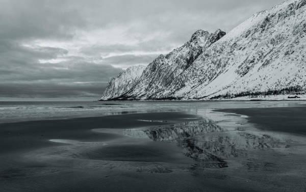 Photograph - Echo by Alex Lapidus