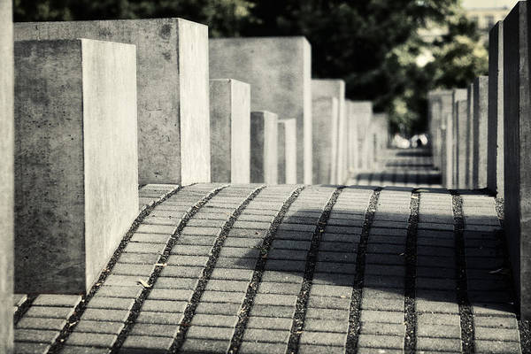 Holocaust Photograph - Echo by Joan Carroll