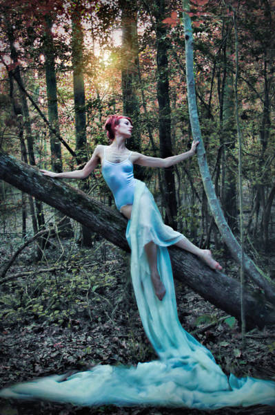 Dryad Wall Art - Photograph - Echoes Of A Dryad by Spokenin RED
