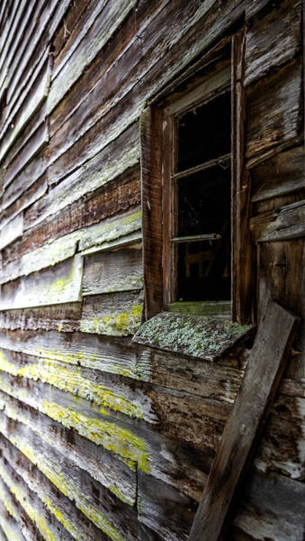 Photograph - Echoes Of Time by Karen Wiles