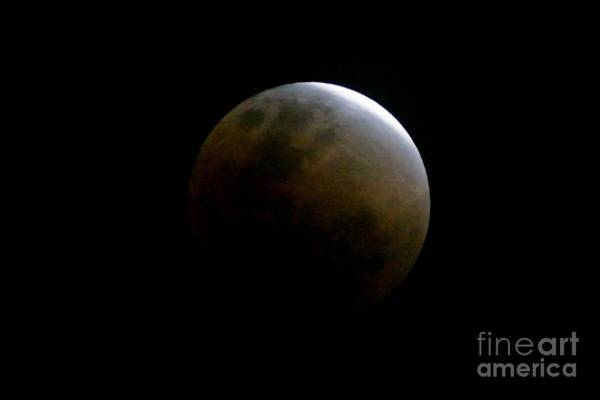 Photograph - Eclipse Of The Super Blue Blood Moon by Christopher Shellhammer