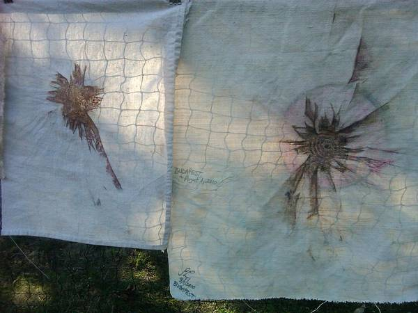 Wall Art - Tapestry - Textile - Eclipse And Friend On Net by Sandra Langley