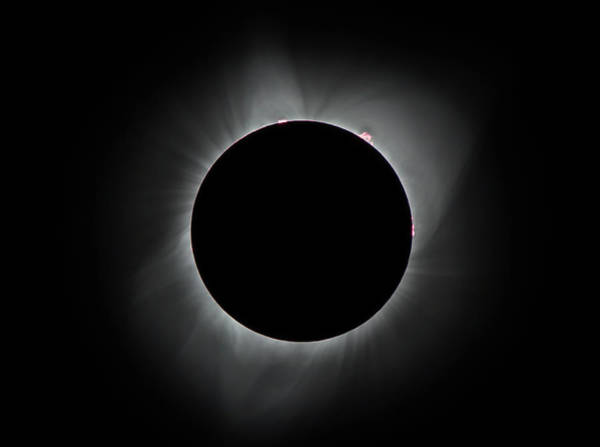 Photograph - Eclipse Prominences by Marc Crumpler