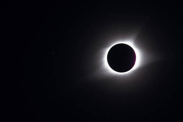 Photograph - Eclipse Totality And Regulus by Paul Rebmann