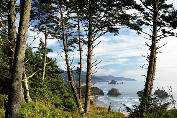 Wall Art - Photograph - Ecola by Patrick Campbell