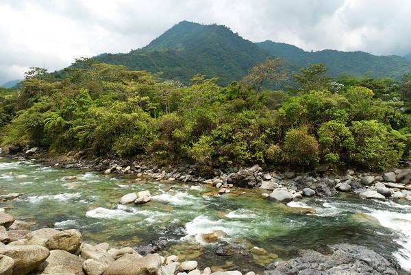 Photograph - Ecuador Green River Landscape by Cascade Colors