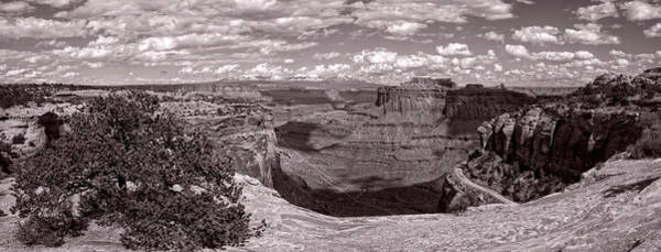 Photograph - Edge Of The Canyon by Leda Robertson