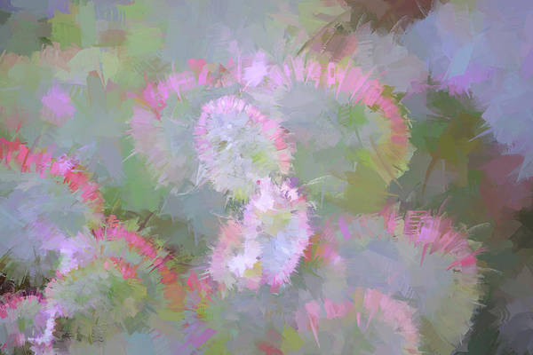 Wall Art - Painting - Edged In Pink by Bonnie Bruno