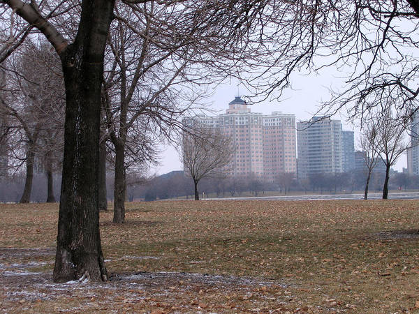 Photograph - Edgewater Beach Apartments by Laura Kinker