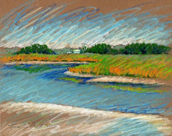 Wetland Drawing - Edisto Beach by Todd Baxter