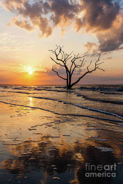 Photograph - Edisto Island Sunrise II by Clarence Holmes