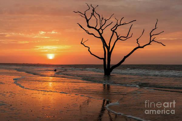 Photograph - Edisto Island Sunrise IIi by Clarence Holmes