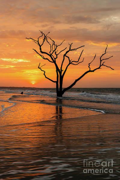 Photograph - Edisto Island Sunrise Iv by Clarence Holmes