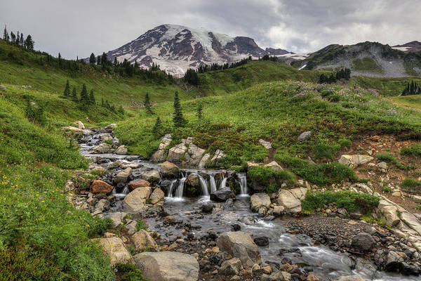 Photograph - Edith Creek And Mount Rainier by Mark Kiver