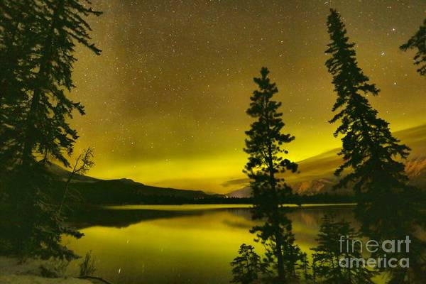 Photograph - Edith Lake Northern Lights Silhouettes by Adam Jewell