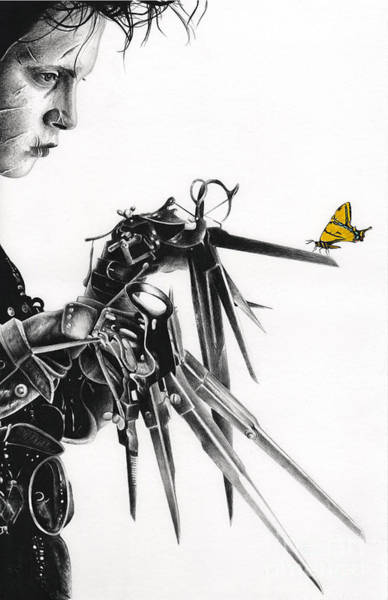 Tim Burton Wall Art - Drawing - Edward And A Butterfly by James Holko