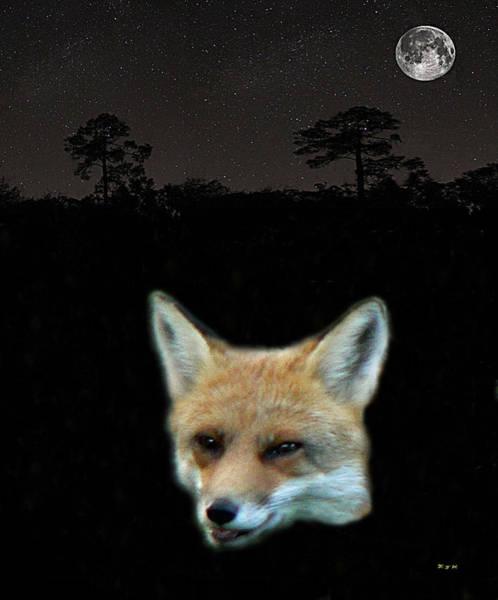 Mixed Media - Eftalou Fox Max by Eric Kempson