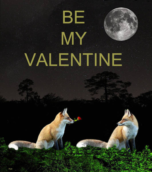 Mixed Media - Eftalou Foxes Be My Valentine by Eric Kempson