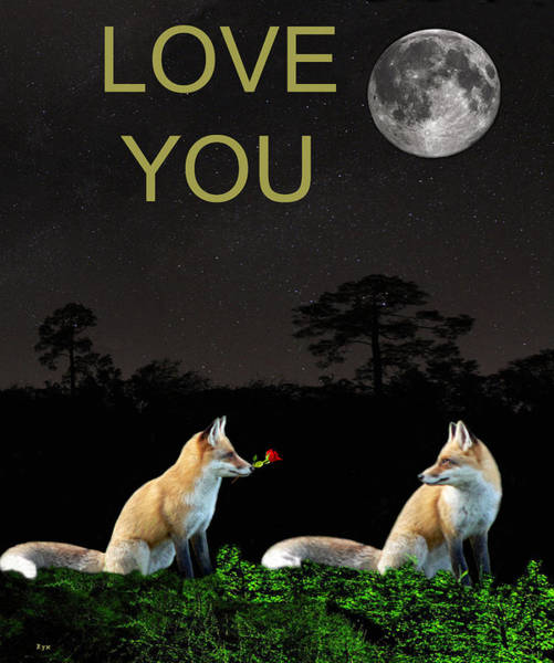 Mixed Media - Eftalou Foxes Love You by Eric Kempson