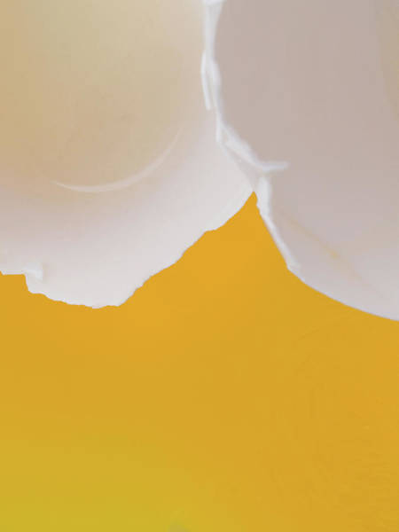 Photograph - Egg Abstract II by Jim DeLillo