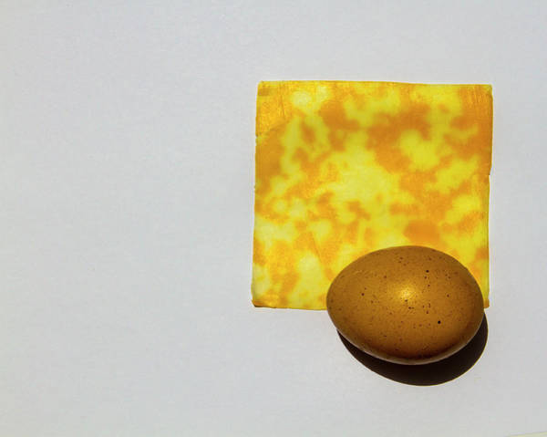 Photograph - Egg And Cheese by Jeff Kurtz