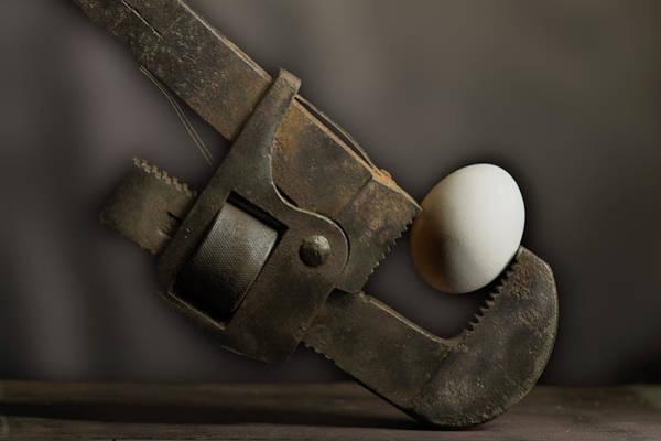 Wall Art - Photograph - Egg Cracker by Paul Freidlund