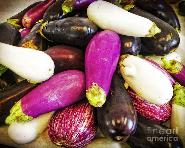Photograph - Eggplant Medley by Dee Flouton