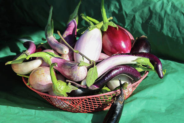 Photograph - Eggplant Still Life by Bonnie Follett