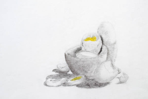 Coco Drawing - Eggs Charcoal by Richard Cloutier