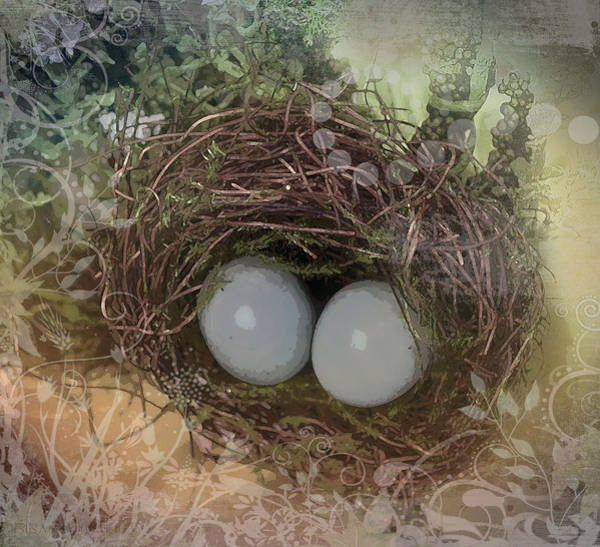 Photograph - Eggs In A Nest by Susan Vineyard
