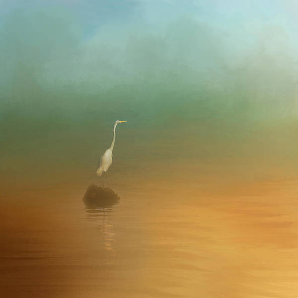 Photograph - Egret At Sea by Jai Johnson