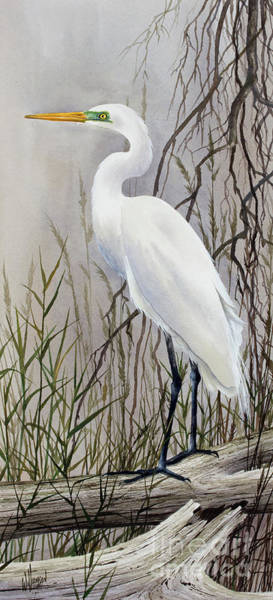 Wall Art - Painting - Egrets Harmony by James Williamson