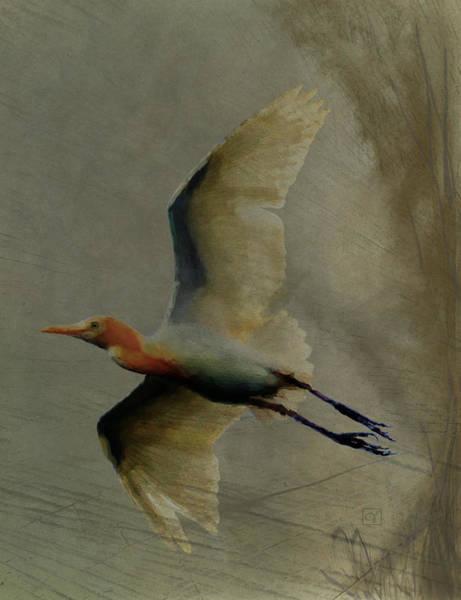 Marsh Bird Digital Art - Egret by Jean Moore