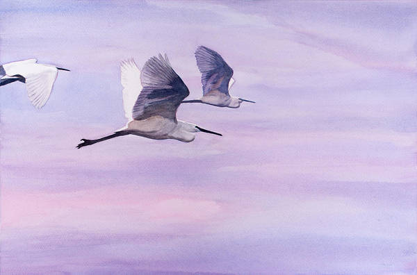 Painting - Egrets At Dawn by Christopher Reid