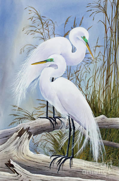 Wall Art - Painting - Egrets Grace by James Williamson
