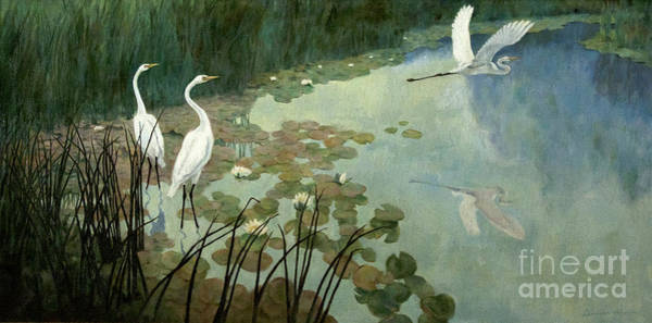 Wall Art - Painting - Egrets In Summer by Celestial Images