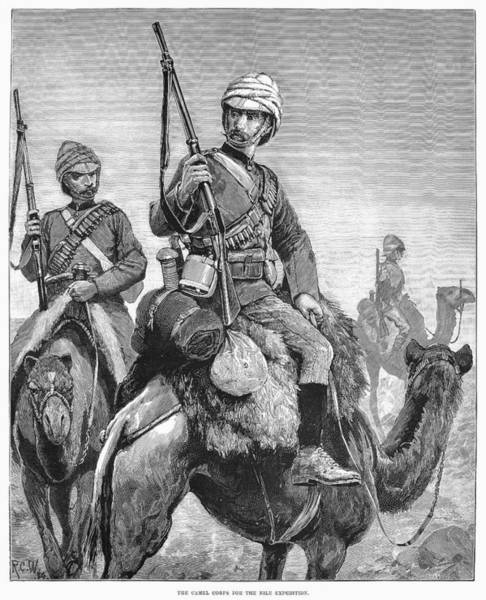 Wall Art - Photograph - Egypt: British Army, 1884 by Granger