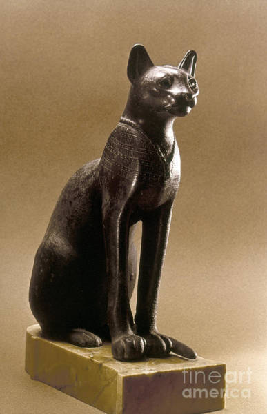 Photograph - Egyptian Bronze Statuette by Granger