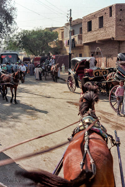 Photograph - Egyptian Street Carriage View.... by Paul Vitko