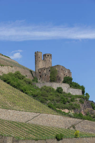 Germania Photograph - Ehrenfels Castle 07 by Teresa Mucha