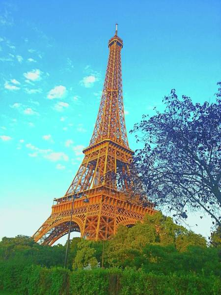 Ico Wall Art - Photograph - Eiffel Tower by Mark J Dunn