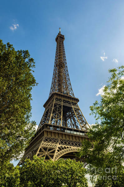 Photograph - Eiffel Tower Through Trees by Paul Warburton