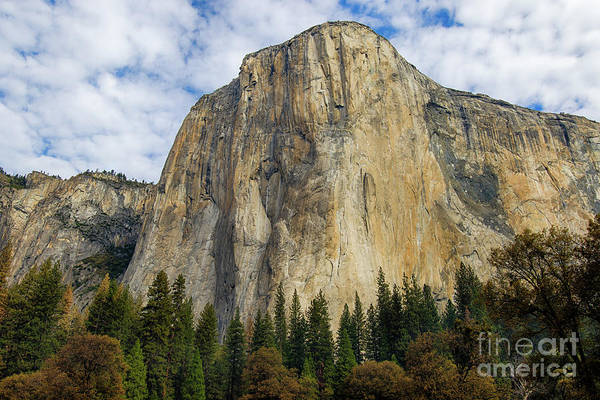 Photograph - El Cap #2 by Vincent Bonafede